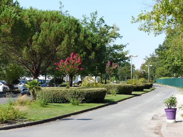 Lou Broustaricq : emplacements et parking en camping Lac de Sanguinet